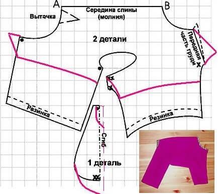 Для построения выкройки комбинезона для кота нужна одна мерка – длина спины (мерка 2, т. е. линия АВ на схеме).