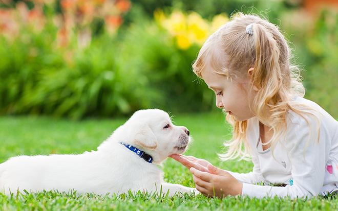 Кличка для щенка