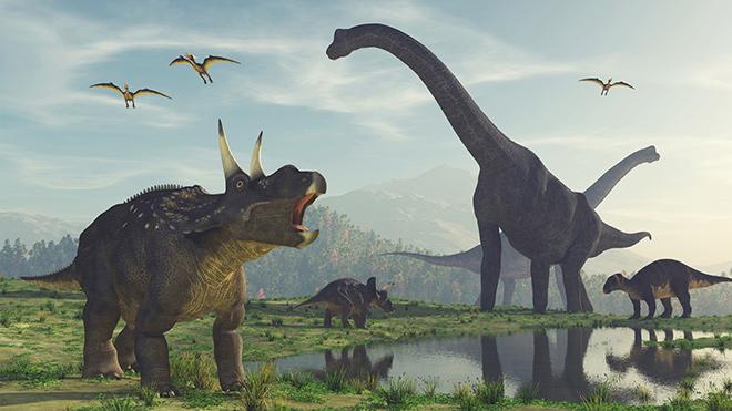 В каких условиях жили динозавры?