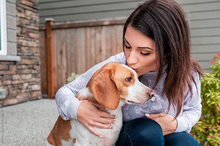 Как продлить жизнь собаке?
