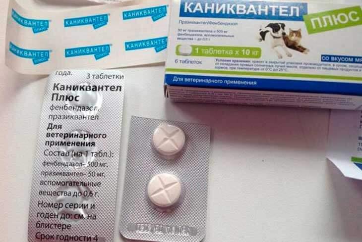 Как работает препарат «Каниквантел плюс»?