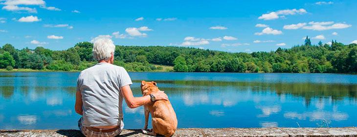 От чего зависит преданность собаки?