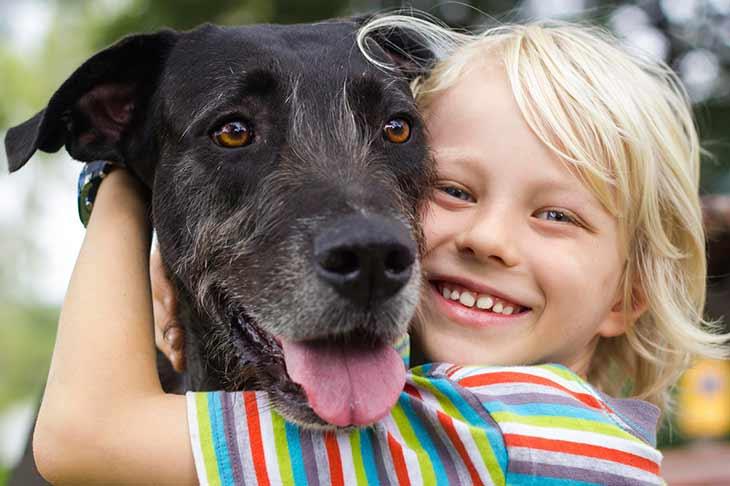 Доклад о домашних животных