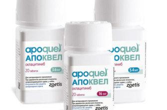 Описание препарата Apoquel
