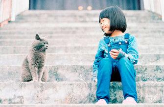 Ребенок смотрит на кошку