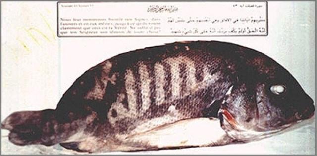 Рыба со священными знаками Дубаи