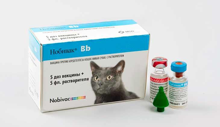Особенности вакцин Нобивак