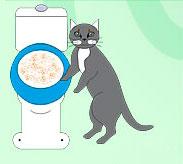 Уберите систему после адаптации кота