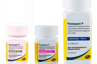 Состав и назначение препарата